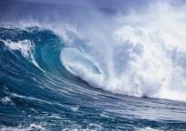 tsunami-2698